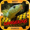 Besten gefährliche Schlangen icon