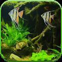Fish Tank HD Live Wallpaper icon