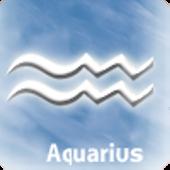 Aquarius Bsness Compatibility