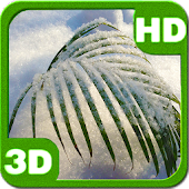 Snowy Tender Winter Palm HD