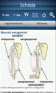 Encyclopedia of anatomy- screenshot thumbnail