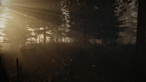 Forest WIKI
