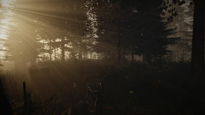 Forest WIKI - screenshot