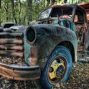 Vintage Dump Truck by Dawn Robinson - Transportation Automobiles ( antique truck, dump truck, rust, junk yard, vintage truck, abandoned,  )