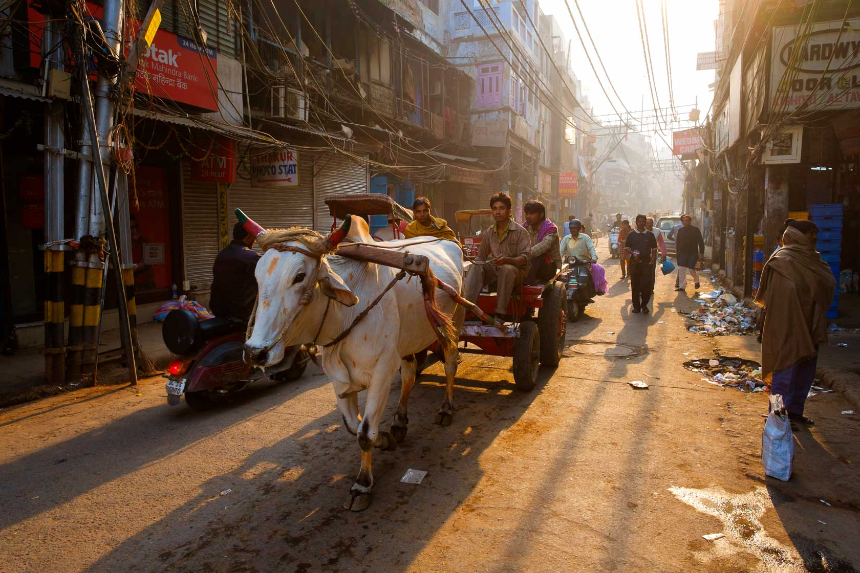 Early Morning in the Bazar, Delhi, India