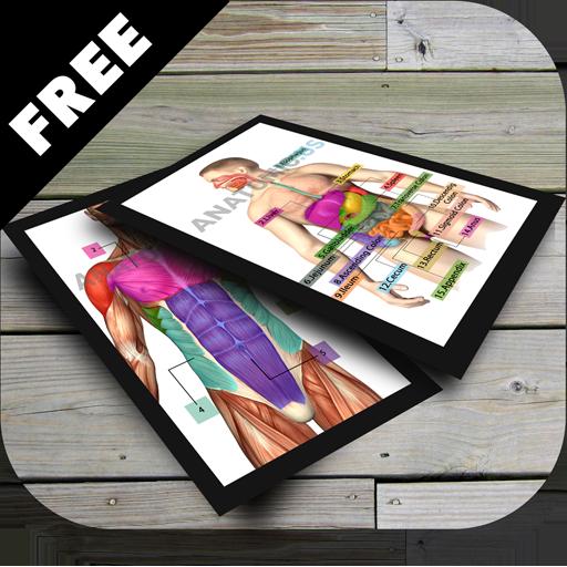 解剖闪存卡 教育 App LOGO-APP試玩