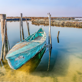 waiting fishery by Paulo Veiga - Transportation Boats ( reflections on the water, calm, wood, waterscape, reflections, transportation, landscape, salt water, photography, stakes, portugal, water, fishery, lagoon, grass, 2014, textures, waiting, paulo veiga, pixoto, boat, fishing boat, ria de aveiro, herb, peace,  )