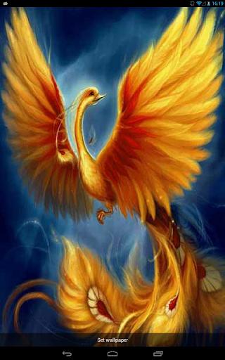 Golden Bird Live WP