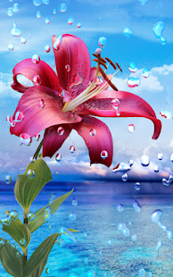 Summer Rain, Flowers, HD LWP- screenshot thumbnail