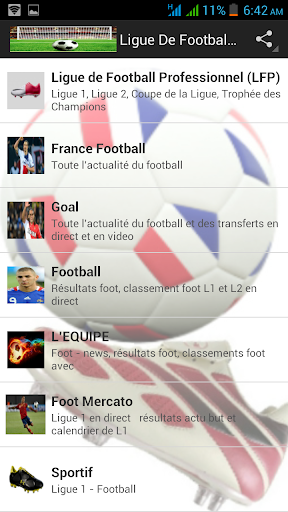 Ligue De Football Français