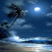 Sea Wave On Beach At Moonlight