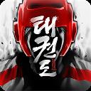 Taekwondo Game APK