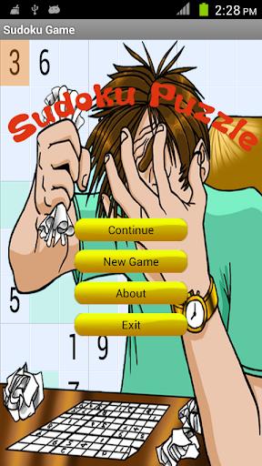Amazing Sudoku Puzzle