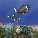 Fish Tycoon Lite APK