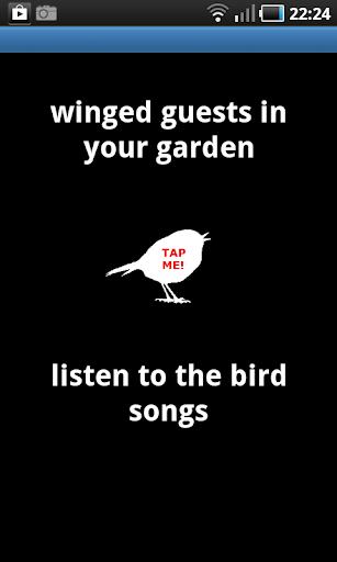 Bird Songs of Europe