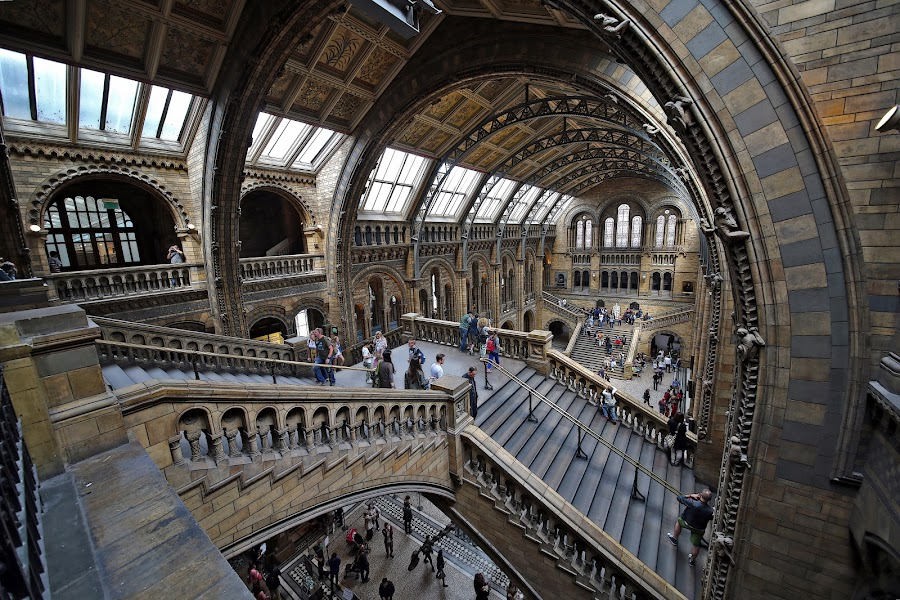 architectural drama at NHM London by Almas Bavcic - Buildings & Architecture Other Interior ( buildings, people )
