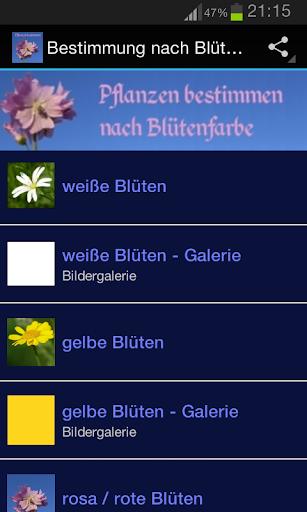 Bestimmung nach Blütenfarben