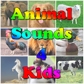 Animal Sounds 4 Kids