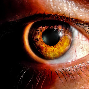 Meye I by Alexius van der Westhuizen - People Body Parts ( pupil, iris, eyeball, retina, eyes, beauty )