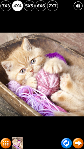 瓷磚拼圖:可愛的小貓2