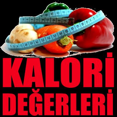 Besinlerin Kalori Değerleri - screenshot