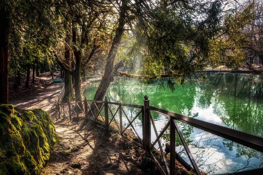 Monza Park by Andrea Conti - City,  Street & Park  City Parks ( monza, nature, park, trees, lake, pond )