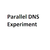 Parallel DNS Experiment