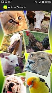蹒跚学步的动物声音