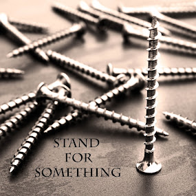 Stand for Something by Denise Johnson - Typography Captioned Photos ( monochrome, stand, screws, object )