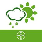 Bayer Agrar Wetter icon