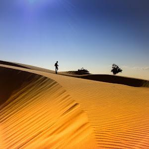 desert09 (1 di 1).jpg