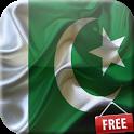 Flag of Pakistan icon