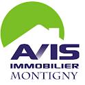 AVIS Immobilier Montigny