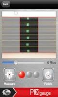 Screenshot of PIC Gauge
