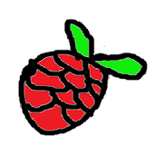 Raspberry Pi Guide