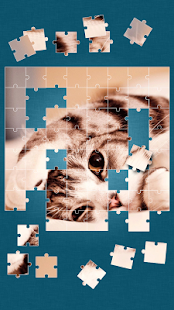 Cute Cats Jigsaw Puzzle 2