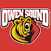 Owen Sound Attack Icon