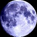 Blue Flux logo