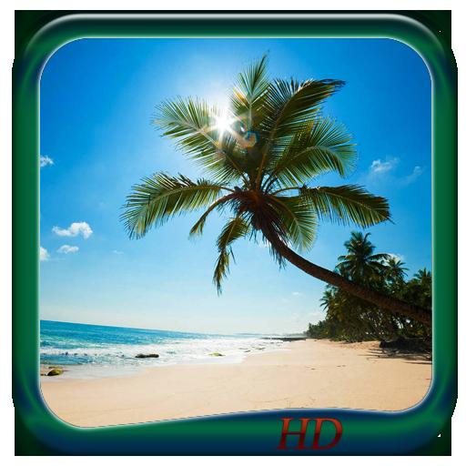 Sandy Beach Wallpaper HD LOGO-APP點子