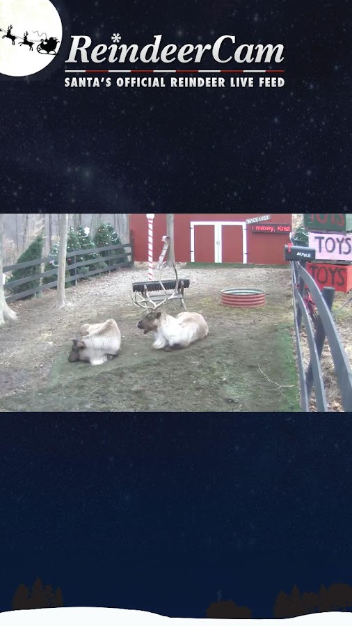 ReindeerCam - screenshot