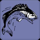 UK Coarse Fishing Records