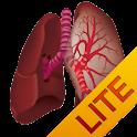 Ausculta Pulmonar Lite logo