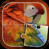 Parrots Jigsaw Puzzles