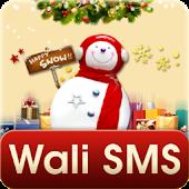 WaLi SMS-Christmas Carnival