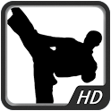 Martial Art - Kung Fu HD WP icon