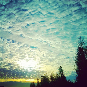 Ovejitas. by Nena Guzmán - Landscapes Cloud Formations ( clouds, sky, life, blue, high )