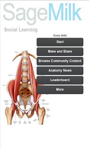 999 Medical Anatomy Terms Quiz