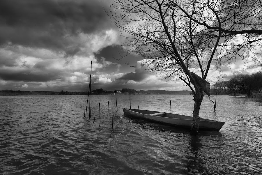 The Little Boat by Jorge Orfão - Black & White Landscapes