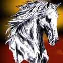 Portalhipico icon