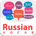 Russian Vocabulary icon